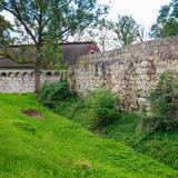 Image: Ruins of the Rożnów castle